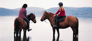 Horse riding, Norway