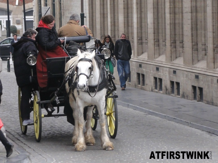 horsecar at Grand Place, Brussels