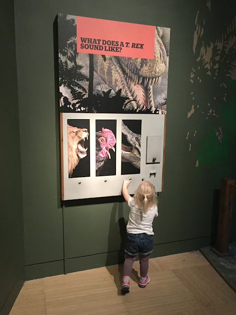 Tin Box Tot looking at one of the interactive displays