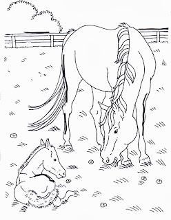 Disegni cavalli da colorare for Disegni da colorare di cavalli