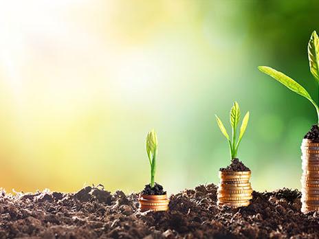Pelajari 5 Prinsip Ini Sebelum Berinvestasi