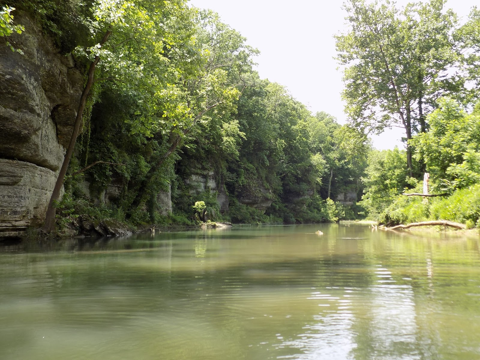 piney river Explore an array of piney river, va vacation rentals, including houses, cottages & more bookable online choose from more than 10 properties, ideal house rentals for families, groups and couples.