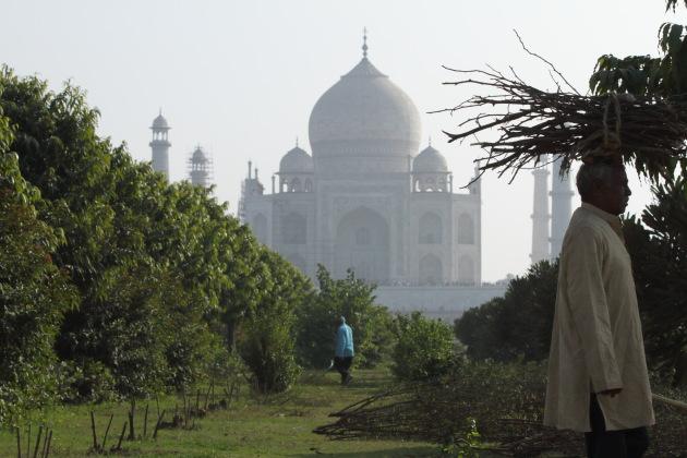 A Mehtab Bagh Taj Mahal Moment, Agra