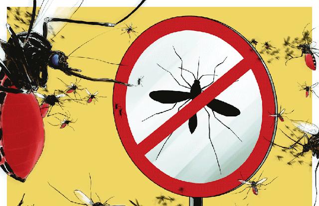 Seekor Nyamuk Bisa Menularkan DBD Ke Enam Orang