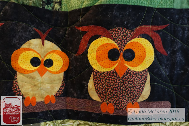 Funky Owls close up