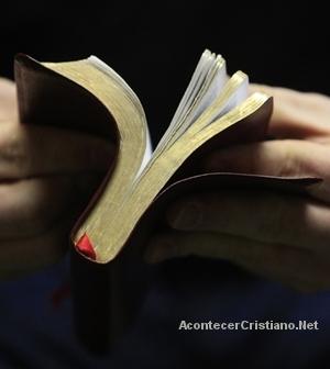 Sociedad Bíblica de Argentina distribuye Biblias
