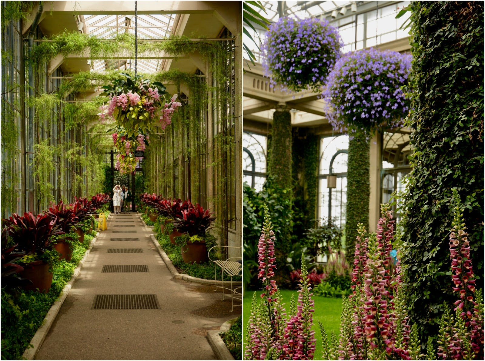 Random-osity: Longwood Gardens