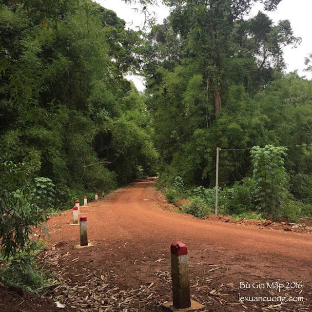 Con đường đất đỏ xuyên rừng Bù Gia Mập