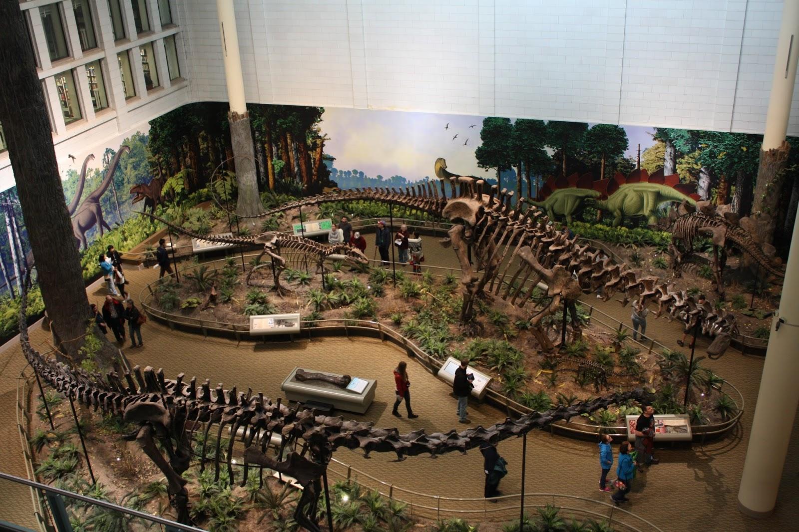 Carnegie Natural Museum