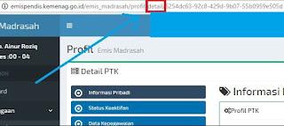 Cara Mudah Edit Detail Informasi PTK dan Siswa di EMIS