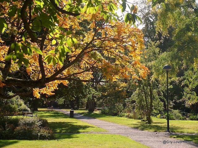 höst i Lund, Botaniska trädgården