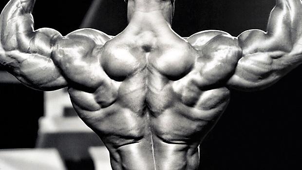 Bodybuilding Targets