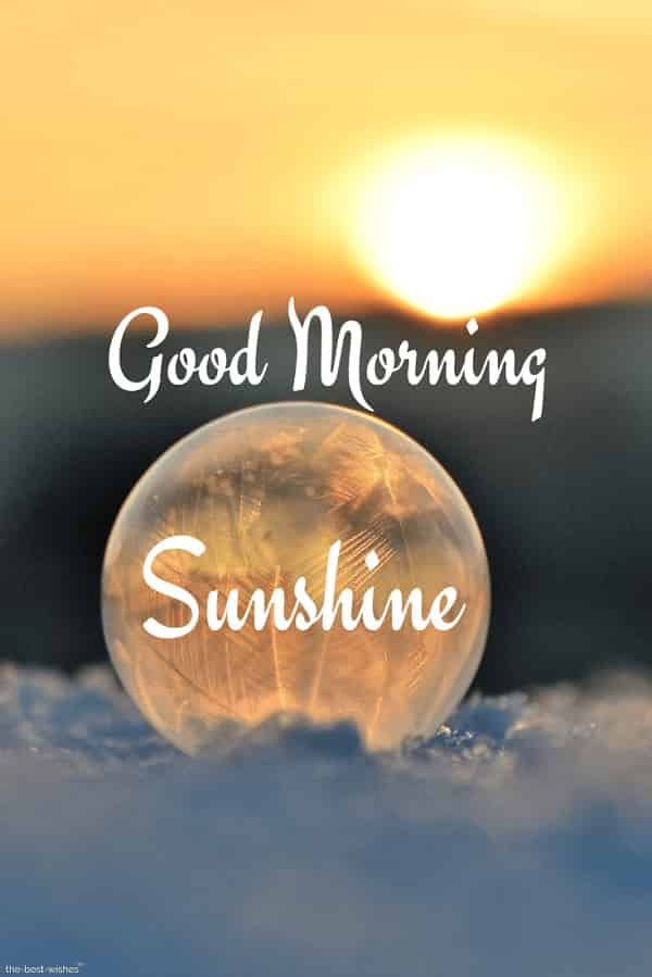 best good morning sunshine wishes