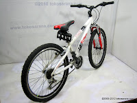 D 24 Inch Element Voyager HardTail Mountain Bike