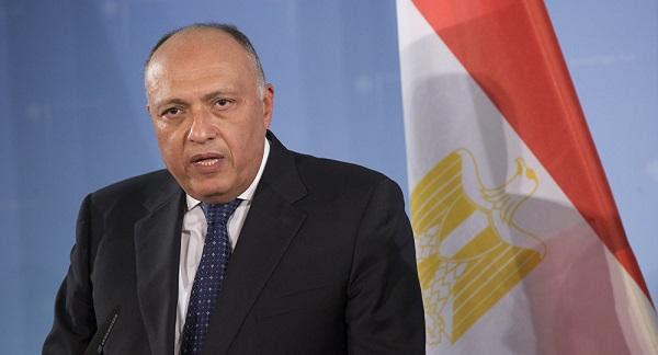 شكري:حول ارسال قوات الى سوريا,مصر لن ترسل قواتها إلى الخارج (فيديو)