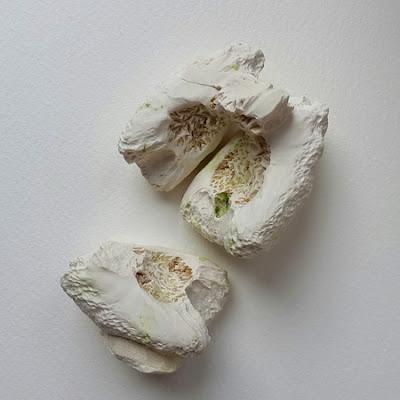 Plaster Cast Vegetables