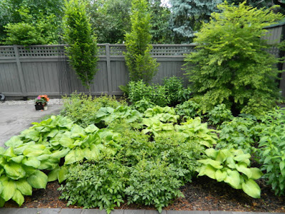 Greektown Toronto garden design after by garden muses--not another Toronto gardening blog