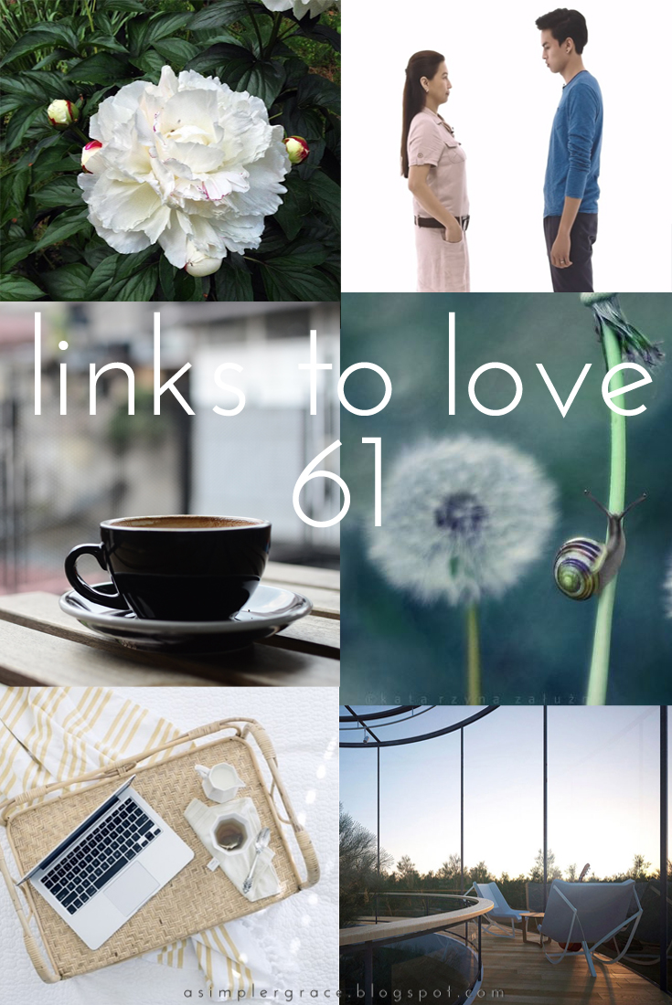 A post featuring my favorite reads from the week.  #linkstolove #fridayfavorites - Links to Love | 61 - A Simpler Grace