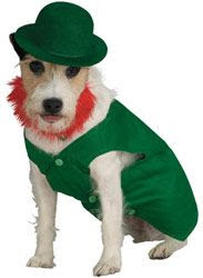 st patrick costume