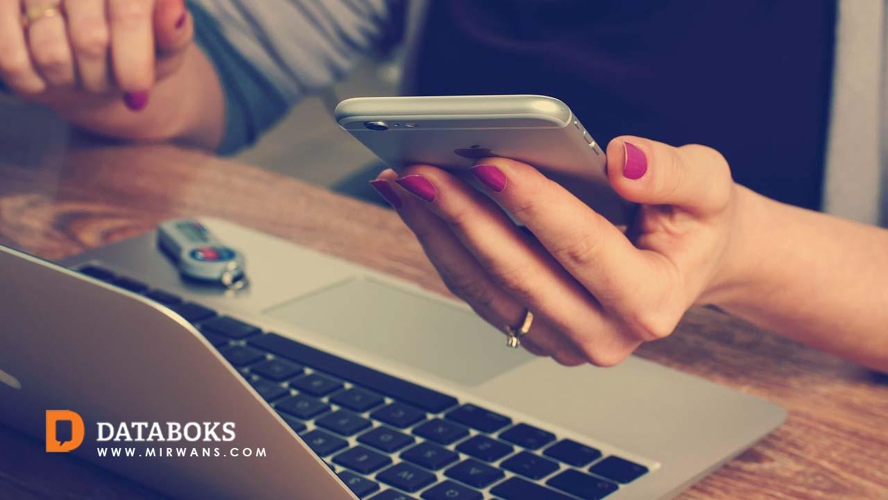 Potensi Perkembangan Digital Bagi UKM di Indonesia
