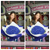 Bunga Valentine Mawar Biru 100 Tangkai