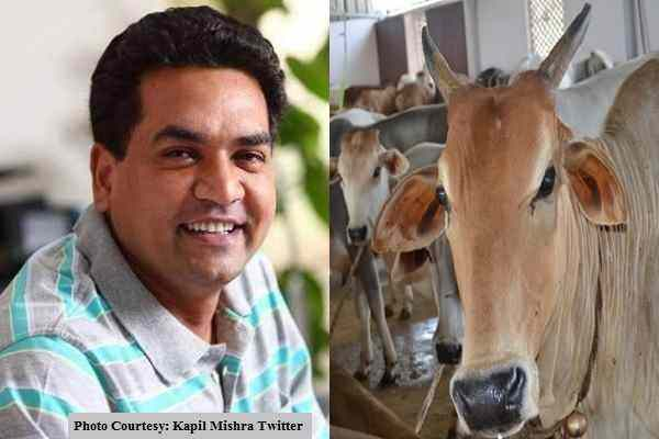 how-to-save-from-gau-rakshak-when-carrying-cow-kapil-mishra
