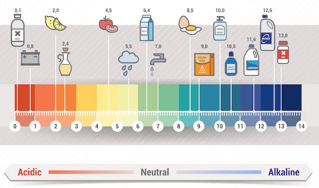 Keasaman air (pH) yang baik untuk ikan cupang