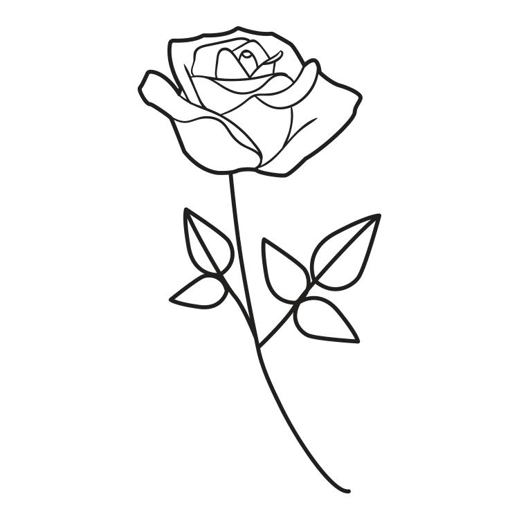 Mewarnai Gambar Setangkai Bunga Mawar Aneka Mewarnai Gambar