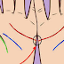 Palm Reading: Check If These Lines On Your Hand Connect