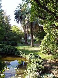 Kebun Botani ( Botanical Garden )