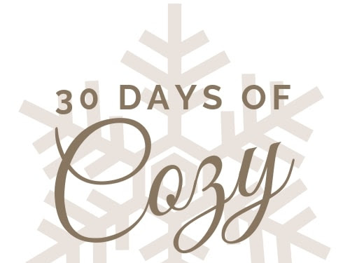 30 Days of Cozy Hosted by The Crochetpreneur