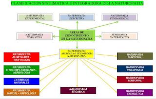 Clasificacion_Sistematica_e_Integradora_