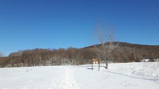 parc d'Oka l'hiver, neige, mont, le Calvaire d'Oka