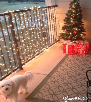 Goodness Grace Outdoor Christmas Apartment Decor