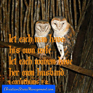 Let each man have his own wife. Let each woman have her own husband. (1 Corinthians 7:2)