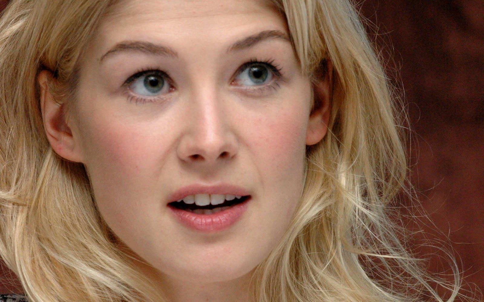 Hollywood Super Stars Rosamund Pike Hot And Sexy Pictures-1589