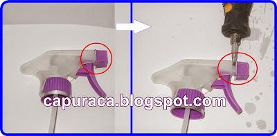 capuraca.blogspot.com