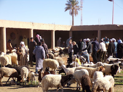 mercado ganado rissani