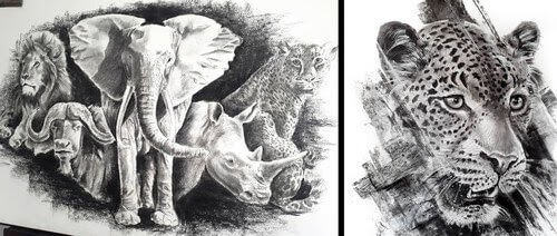 00-Charcoal-Drawings-Natalya-Bassani-www-designstack-co