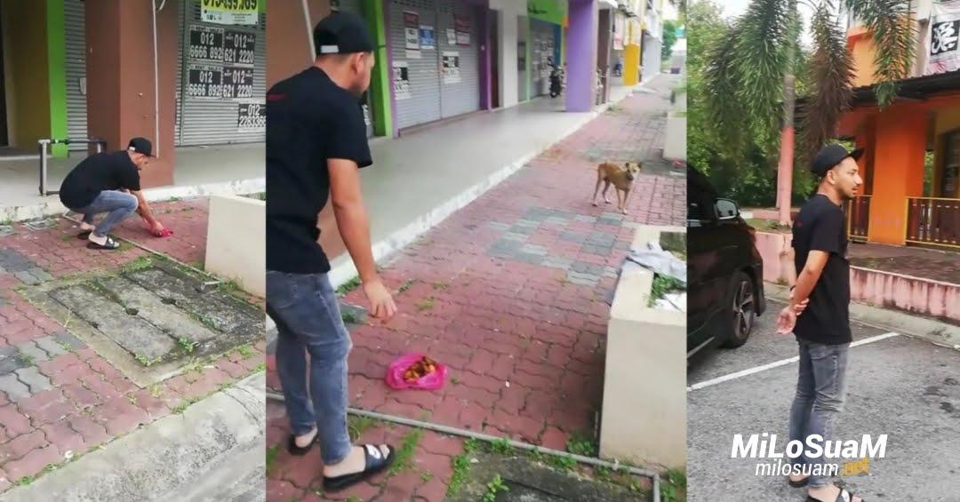 Zizan Razak bagi makan anjing patah kaki