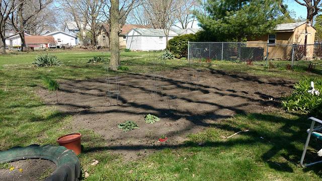 Spring Garden Planting 2016