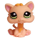 Littlest Pet Shop Multi Pack Kitten (#1128) Pet