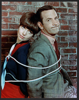 Don Adams Barbara Feldon Get Smart classic TV show