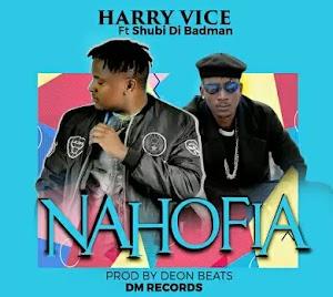 Download Audio | Harry Vice ft Shubi Di Badman - Nahofia