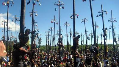 Sejarah Di Balik Lomba 17an   1. Lomba Pnjat pohong pinang                            Pohon pinang didirikan di lapangan. Pohon pinang dipilih karena batangnya tinggi,  licin dan tidak bercabang. Batang pohong pinang dilumuri pelumas supaya licin. Di atasnya dipasang lingkaran dari bambu dan berbagai hadiah digantungkan di situ. Dan dipuncaknya, selalu dipasang bendera Merah Putih.  Satu kelompok panjat pinang terdiri dari 5 sampai tujuh orang. Beberapa dipilih yang berbadan besar dan kekar, berperan sebagai fondasi di bagian bawah. Untuk di bagian puncak dipilih orang yang berbadan kecil dan lincah memanjat. Semua kelompok bergantian memanjat dan memperebutkan hadiah. Mula-mula satu orang berdiri di depan pohon pinang, orang kedua berdiri di pundaknya, kemudian orang  ketiga berdiri di pundak orang kedua dan seterusnya sehingga tingginya hampir mendekati puncak pohon pinang. Orang yang ada di puncak berusaha meraih hadiah yang tergantung. Hadiah yang berhasil dijatuhkan menjadi hak kelompok itu.  Memanjat dan berdiri di atas pundak orang lain, sambil menahan beban orang lain di  atas tubuhnya hingga 4 sampai 5 orang, dan berusaha mengambil hadiah yang sulit  diraih, bukan hal yang mudah. Apalagi tubuh mereka juga mau tidak mau terkena  pelumas sehingga menjadi licin. Usaha mereka untuk mencapai puncak