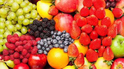 dinh dưỡng cho nhím kiểng