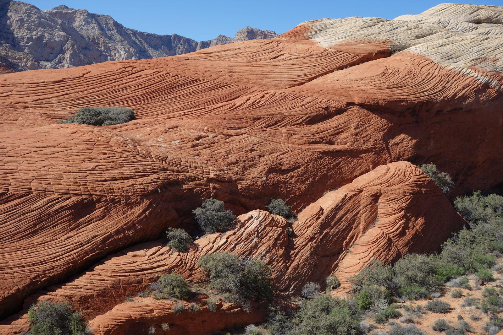 Snow Canyon Rock Climbing Guide | Visit Utah  |Snow Canyon State Park Utah