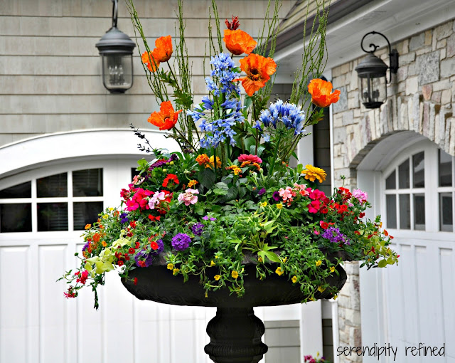 Brightly colored annual flowers spring and summer urn planter