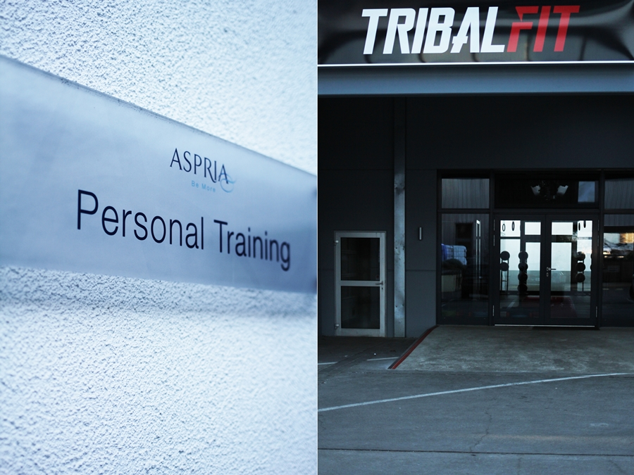 tribal fit personal training aspria