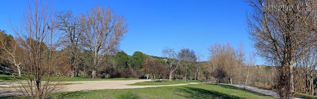 Monte de El Pardo (Madrid)